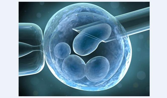 ¿Qué hay que saber sobre las Células Madre y la osteoartritis?